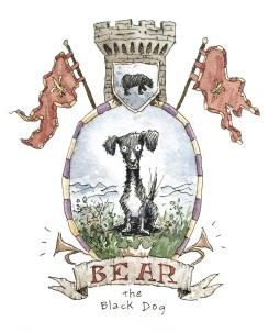 bear intro